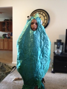 The awesome Fish costume my friend Lesley made!