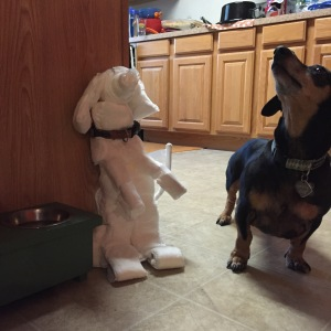 "ITEM 40 IMAGE- They say, ""A dog is a man's best friend,"" but they are sexist. Dogs can be women's best friends too. To prove it, make one entirely out of feminine hygiene products. The dog must be at least 40 centimeters tall. (See how international we are? Look at these units!)"